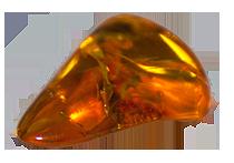 LE pietre zodiacali del Leone - l'Ambra